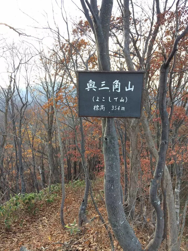 奥三角山(よこして山)の写真