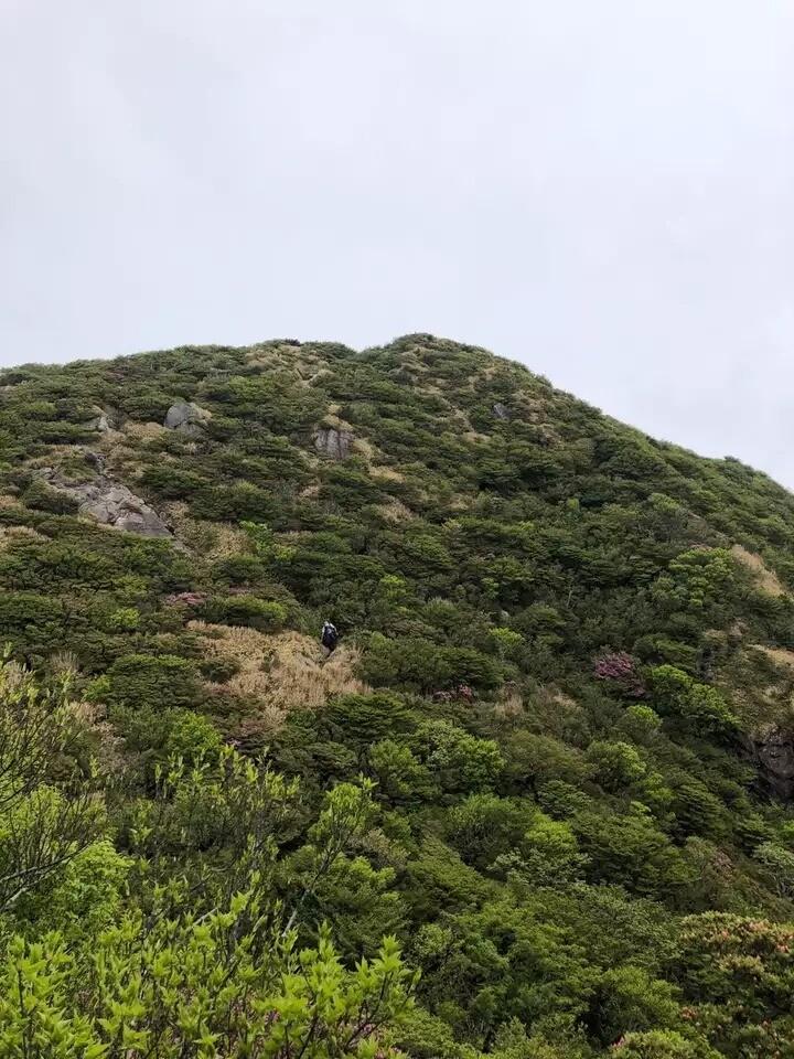 国見岳(長崎県)の写真