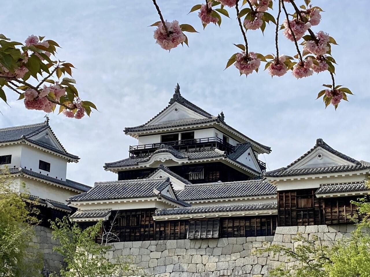 勝山(愛媛県松山市丸之内)の写真