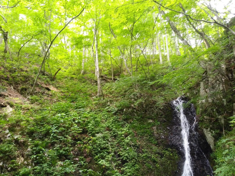 牛曳山の写真