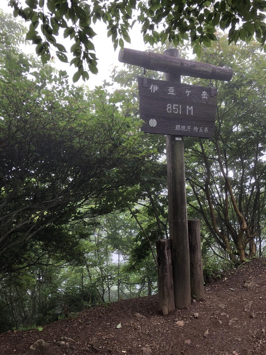 1時間ほどで伊豆ヶ岳に到着!<br> <br> ずっと待ちわびていたにもかかわらず、滞在時間は約1分笑笑<br> だってなんもねーんだもん、頭が高ぇよ!(何様)<br> <br> あ、伊豆ヶ岳おばさんの石碑を撮るの忘れてました、、、😂<br> <br>
