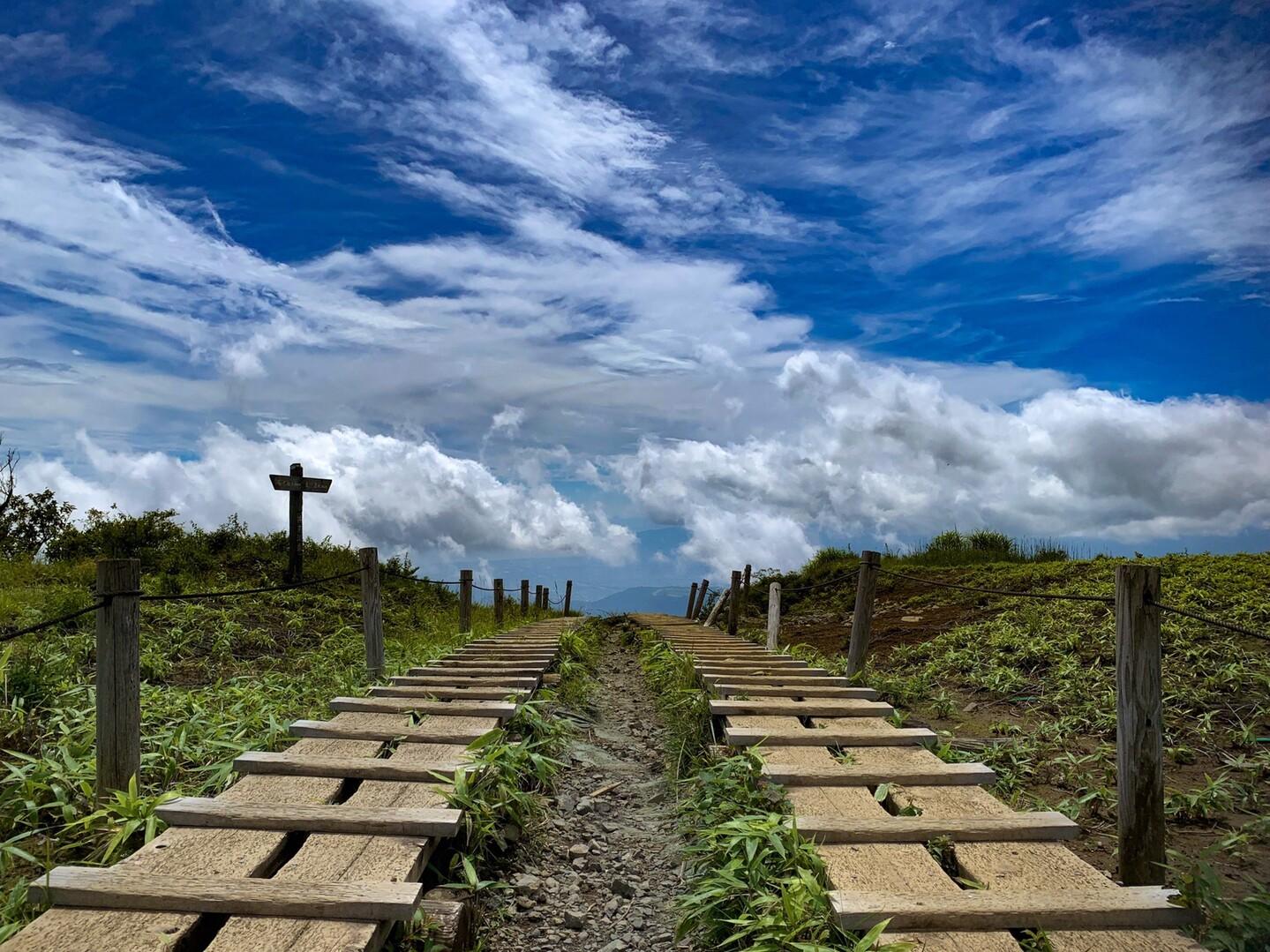 表尾根縦走コースから大倉尾根下山の写真