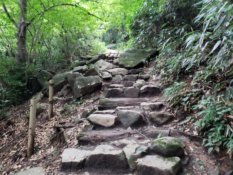 筑波山 御幸ヶ原〜白雲橋コースの写真