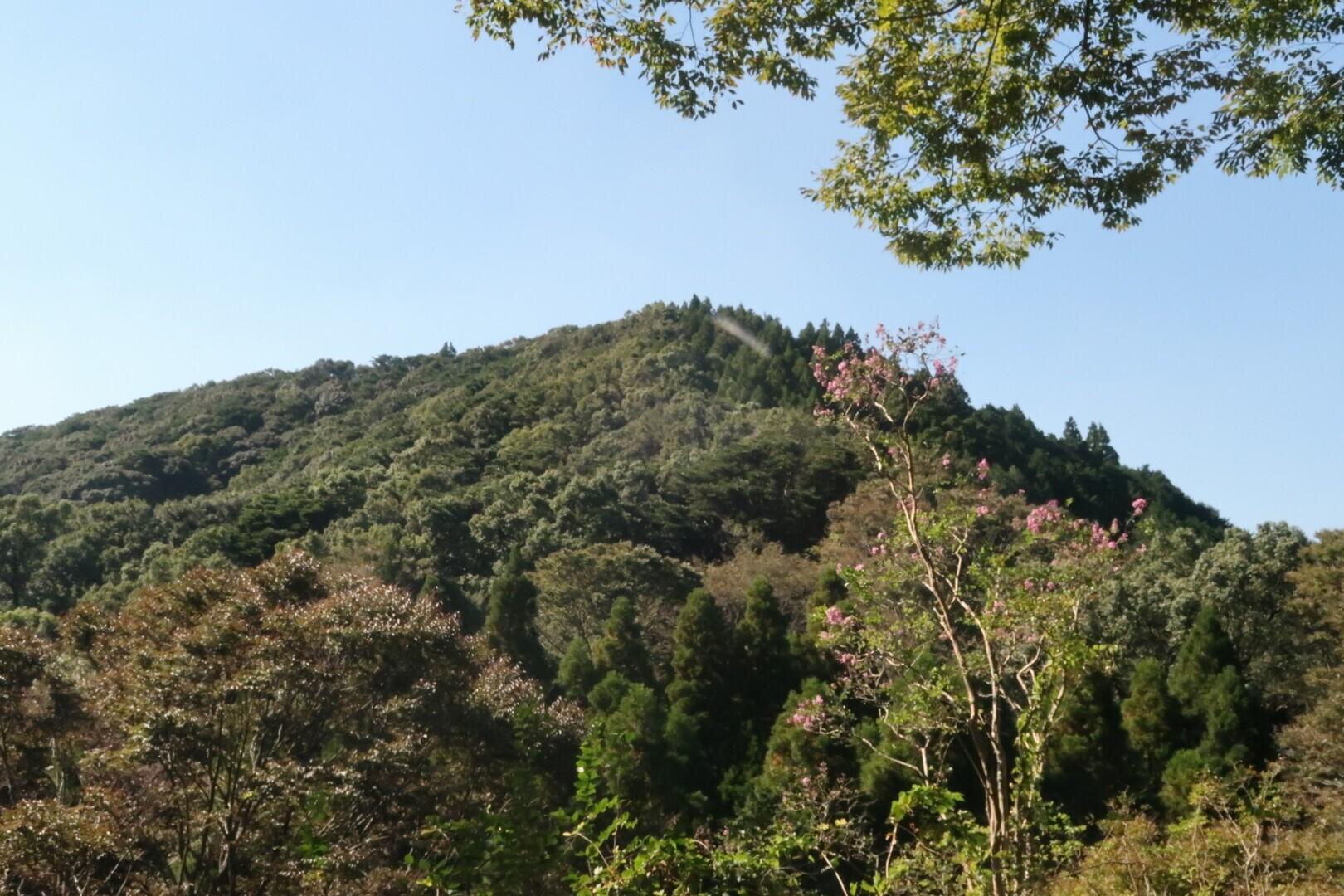 高良山の写真