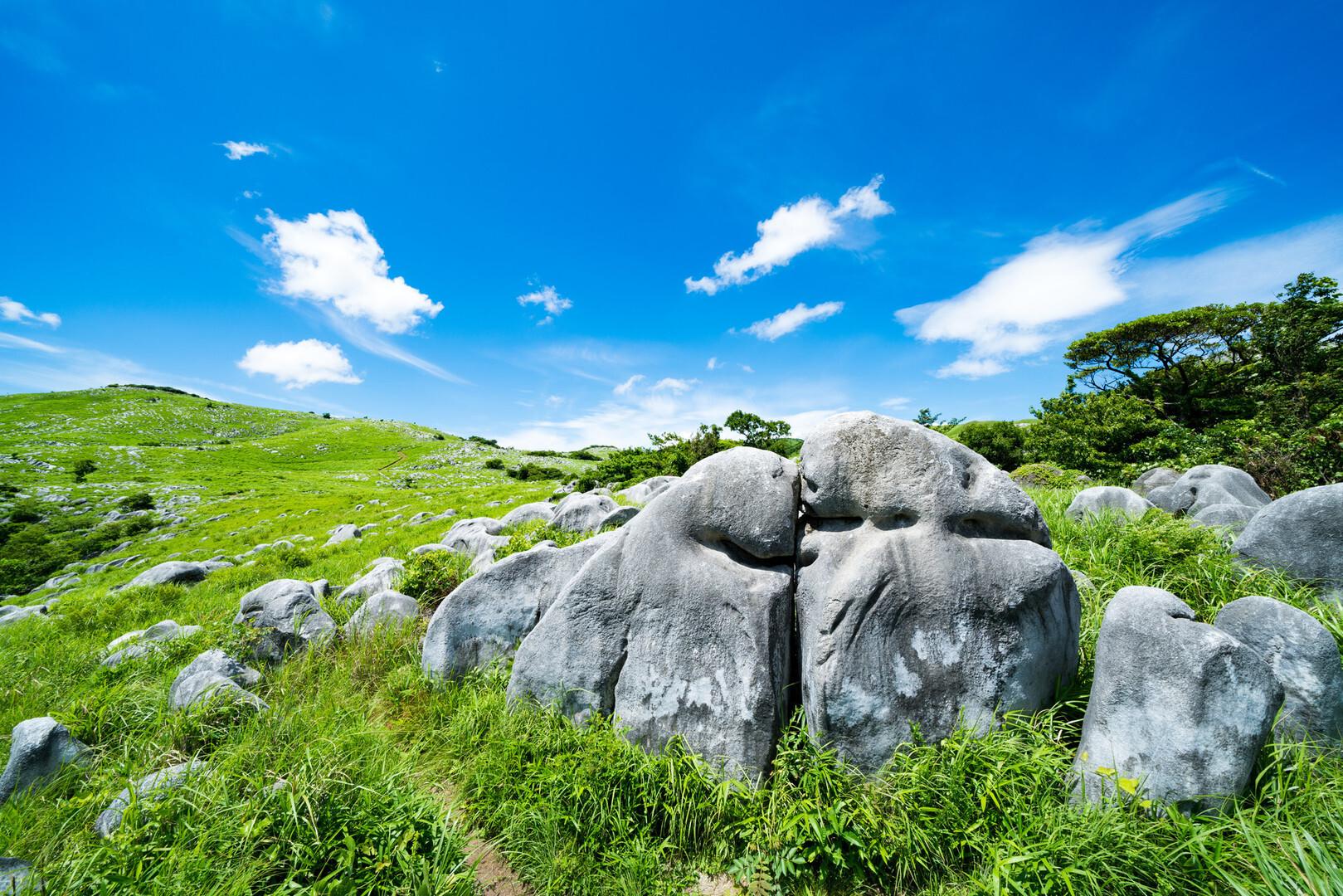 貫山(平尾台)の写真