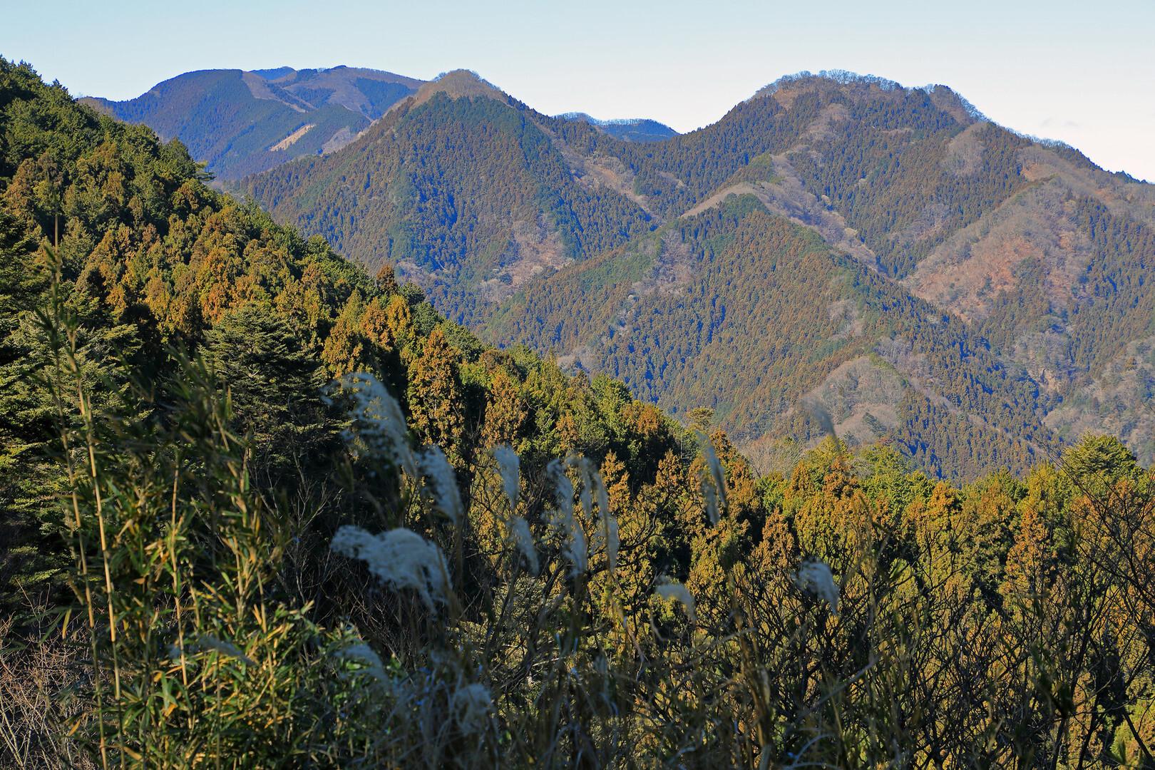 伊豆ヶ岳の写真