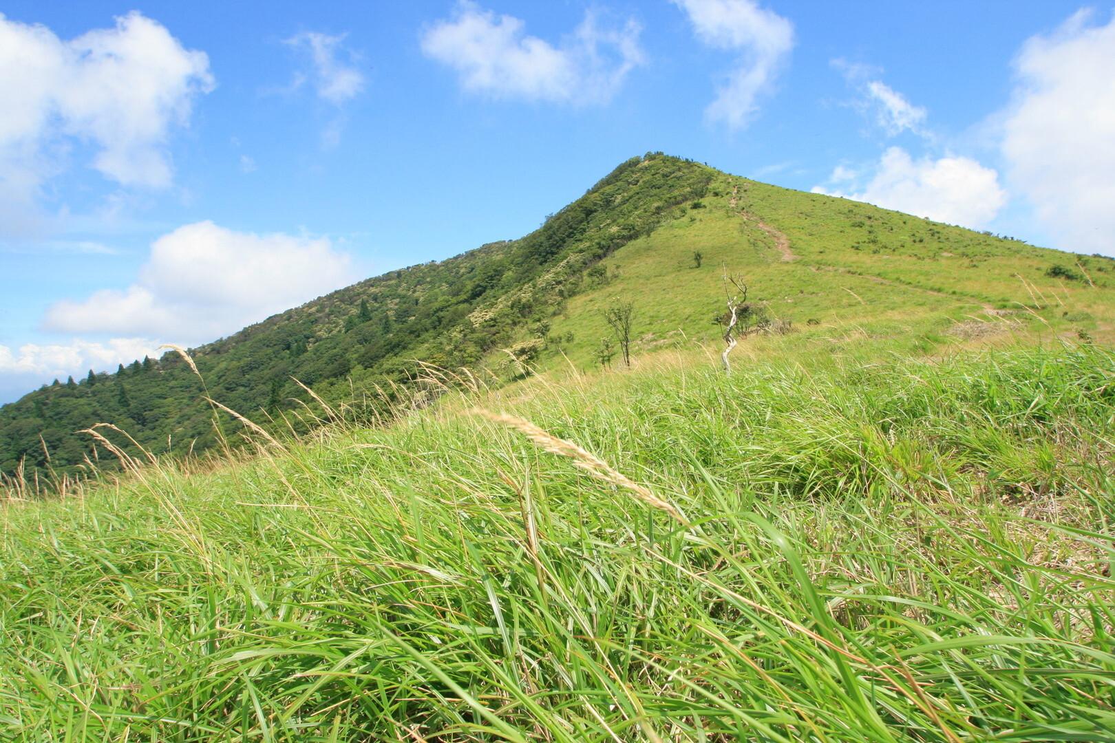 武奈ヶ岳の写真