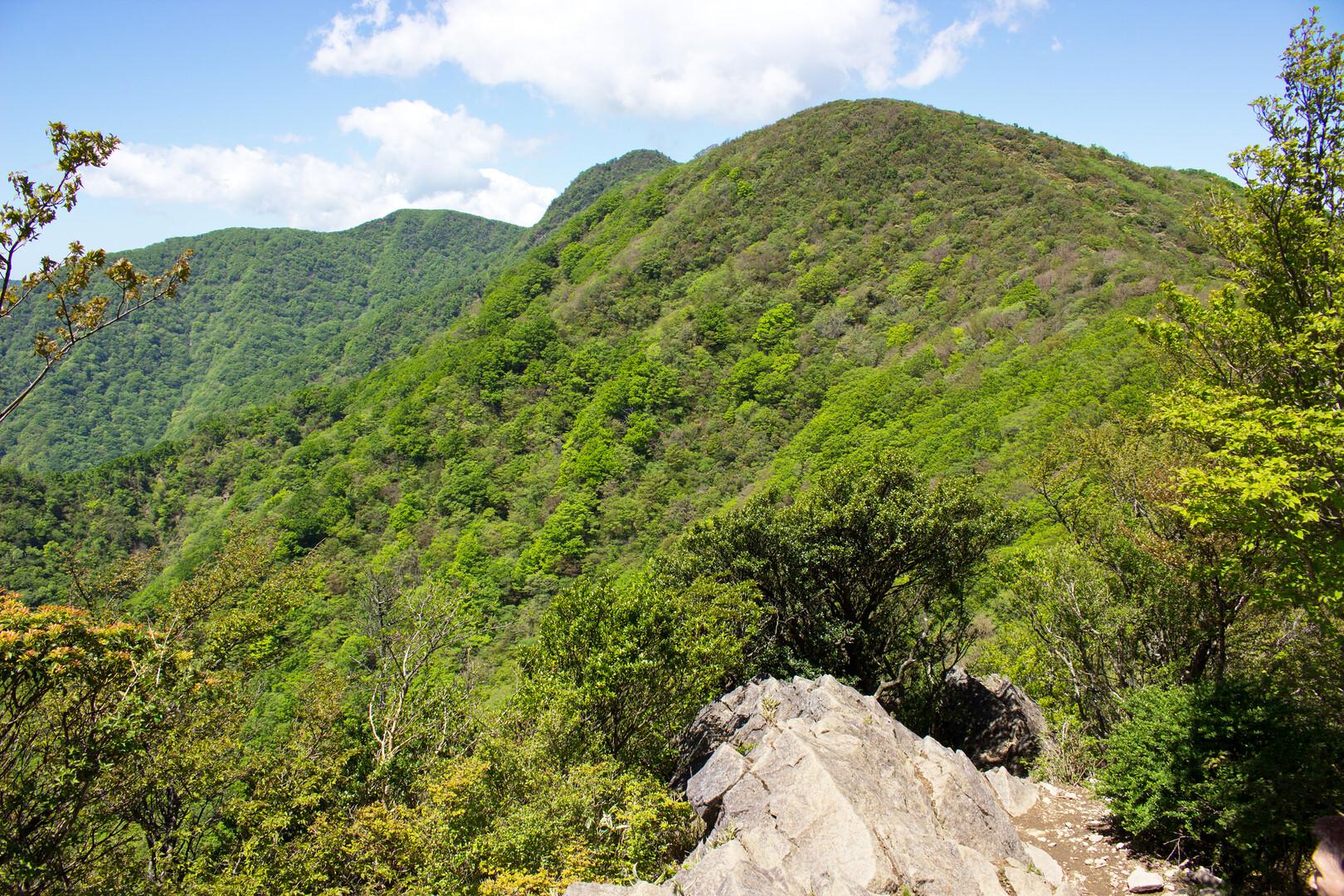 天城山の写真