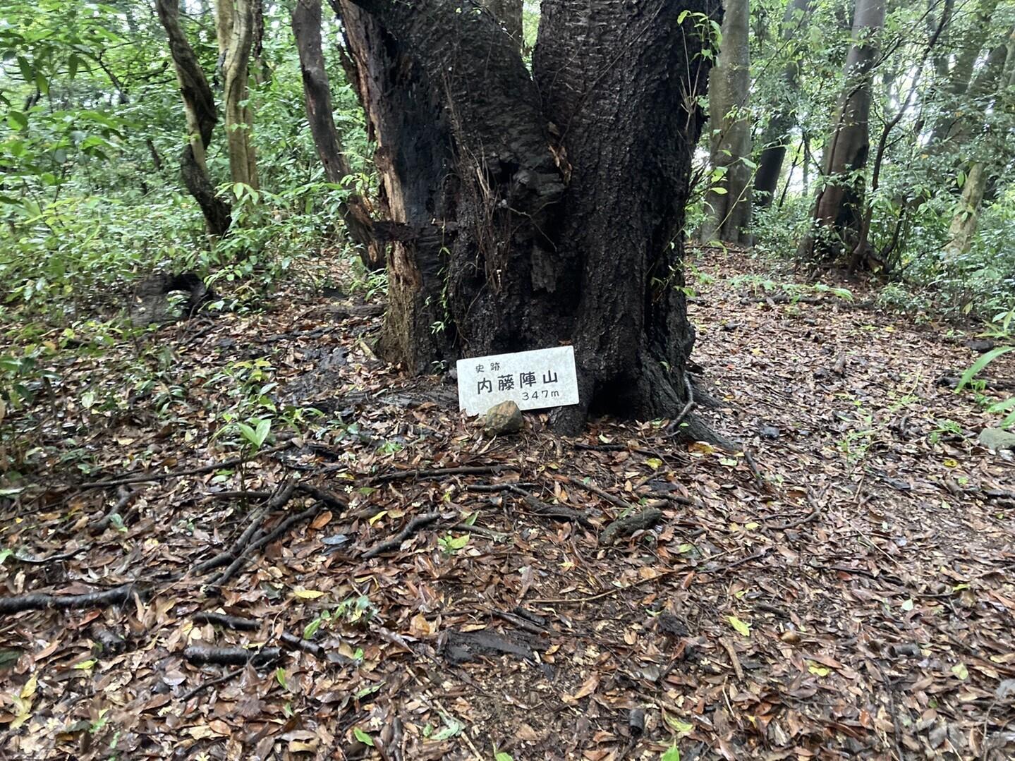 内藤陣山の写真