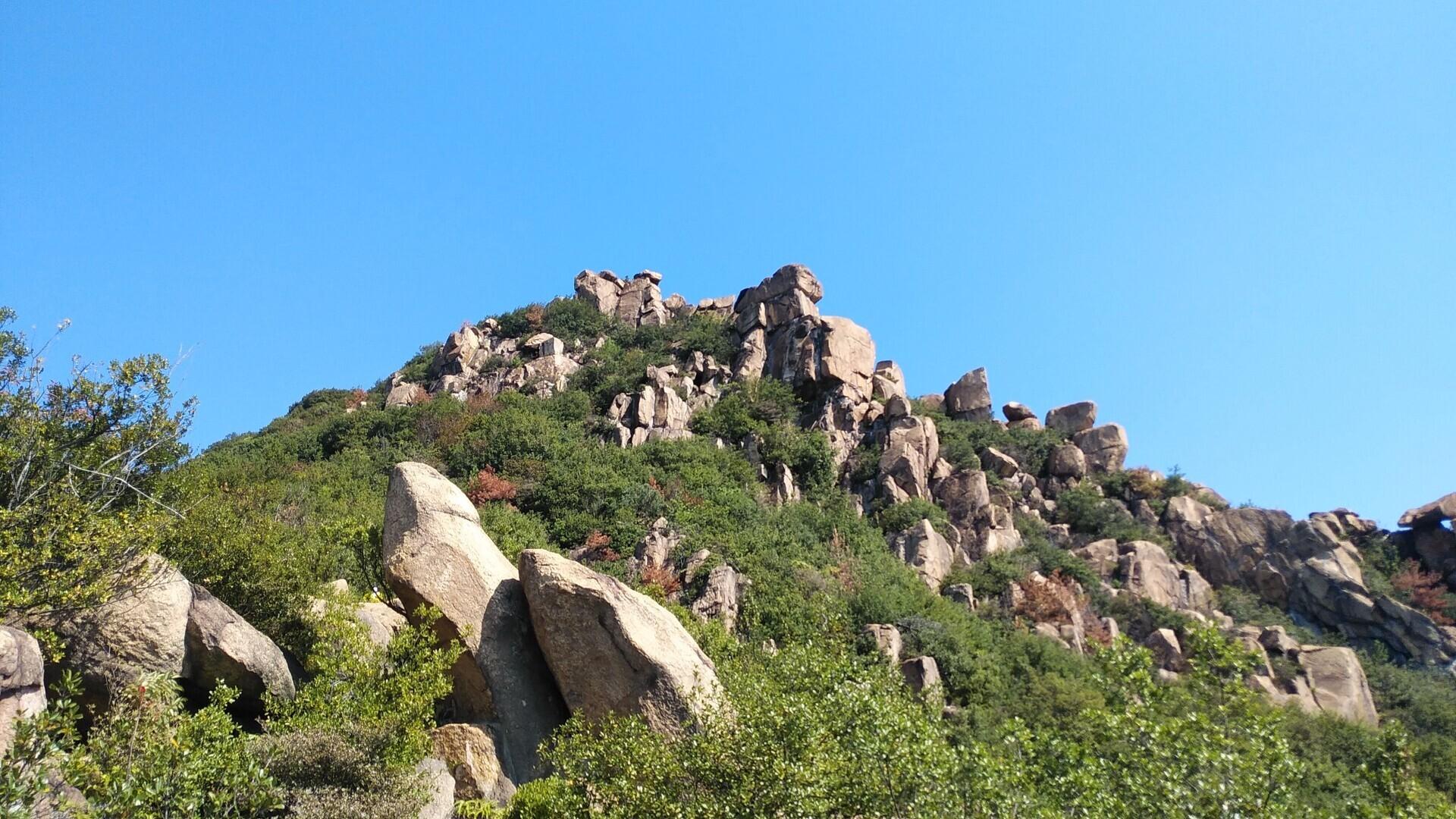 新割山(王子が岳)の写真