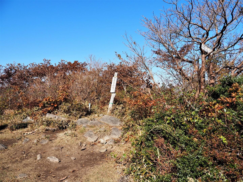 伊良谷山の写真