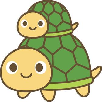 亀2号🐢亀足チャンネル