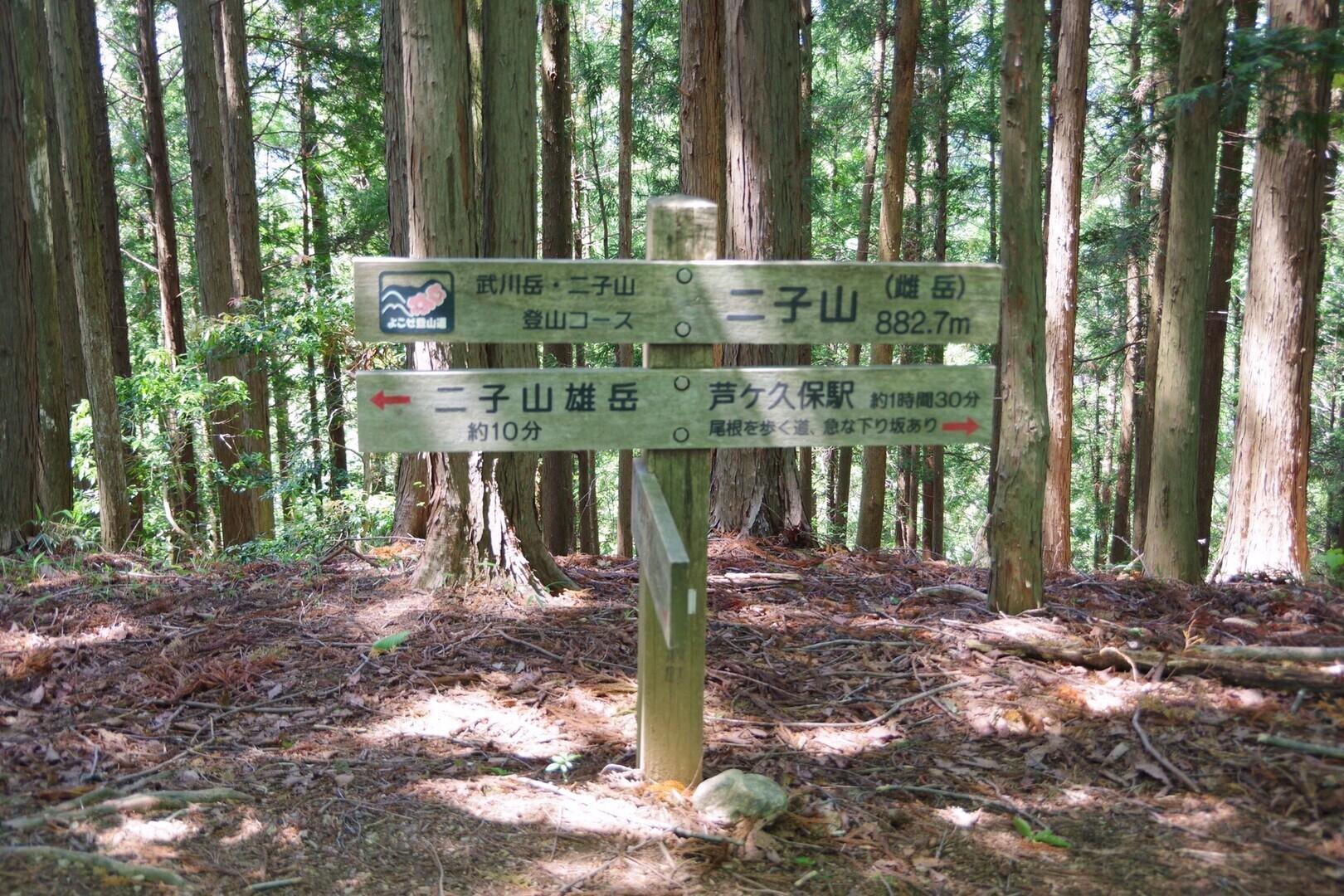 二子山(横瀬二子山雌岳)の写真