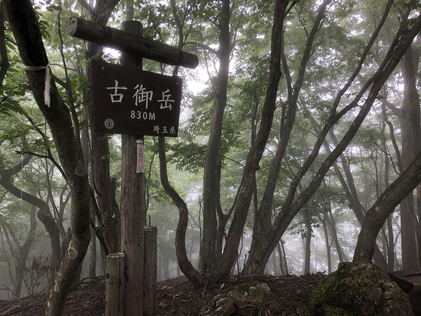 何組かで賑わっていた伊豆ヶ岳をそそくさと立ち去り、古御岳に到着。