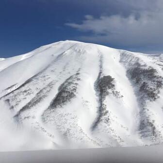 High Altitude Snow(HAS)🍀