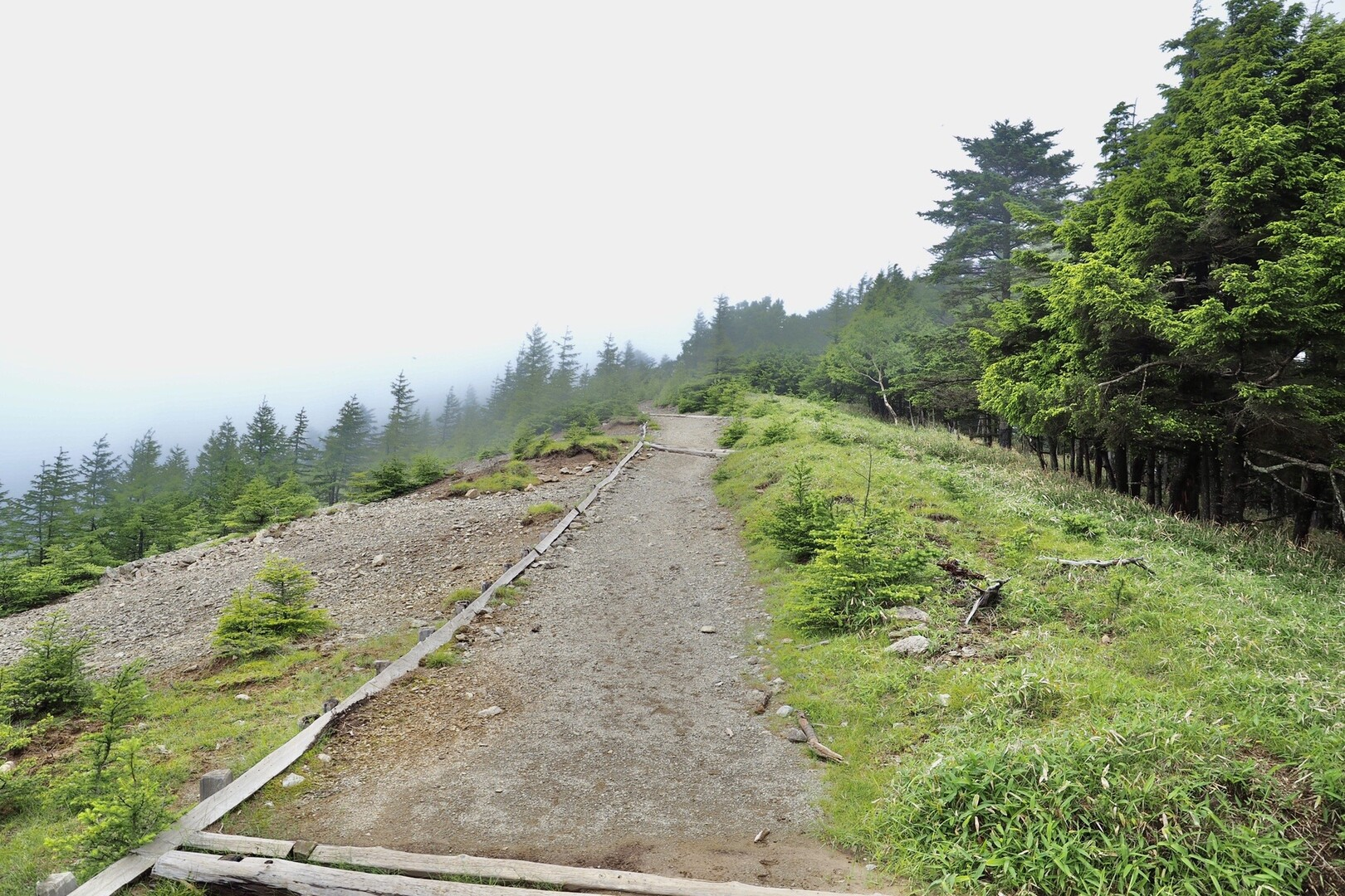 ボス急登を越えて、美しい稜線を堪能する。<br> 晴れてさえいれば・・・・。<br> <br> というかもうこの時点ですでに頭の中は飯のことしか考えられなくなっていた。<br> <br> そんな思考停止の中、もこもぐさんが会話をリードしてくれたので、なんとか歩けました🚶♀️