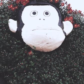 yamagureko