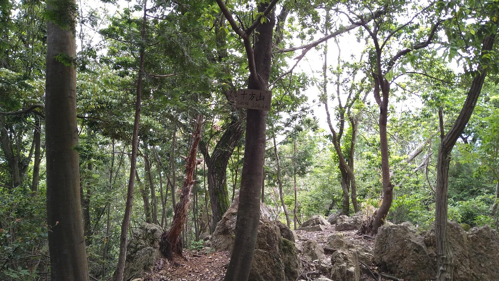 十方山(京都府)の写真