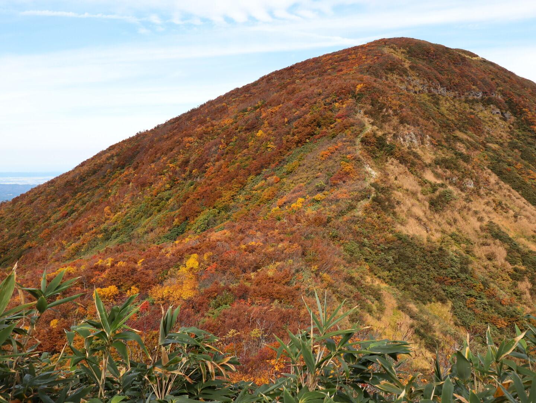 大岳(新潟県)の写真